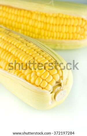 Two overlapping corn on the white background in the vertical - stock photo