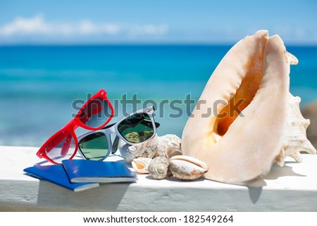 two passports with sunglasses on the beach on ocean background - stock photo