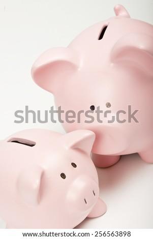 Two Piggy Banks - stock photo