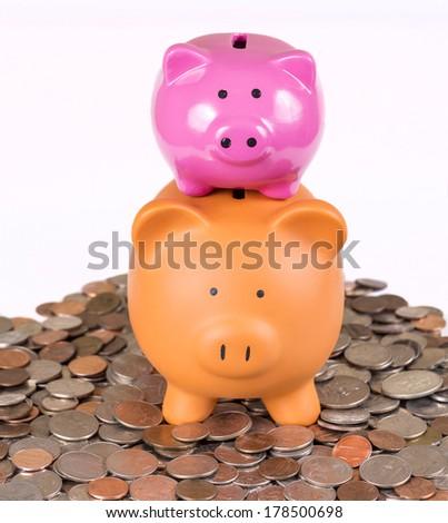 Two piggy banks for saving money - stock photo