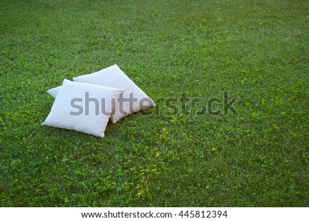 Two pillows on the grass