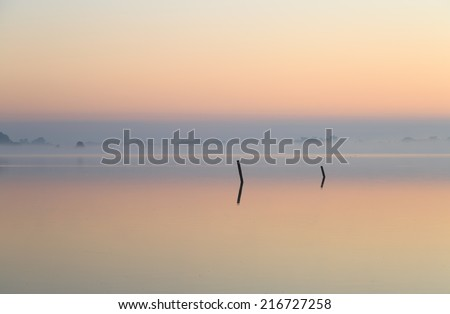 Two poles in a lake during a tranquil, foggy sunrise in late summer. - stock photo