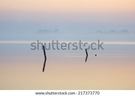 Two poles in a lake during a tranquil sunrise. - stock photo