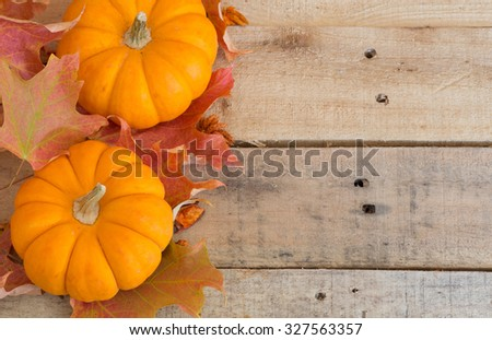 Two pumpkins with colorful fall leaves on wood background