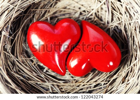 Two red hearts in bird's nest on wooden board - stock photo