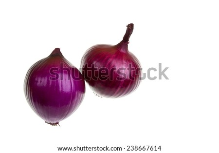 Two red onions isolated on white and with space for writing. - stock photo