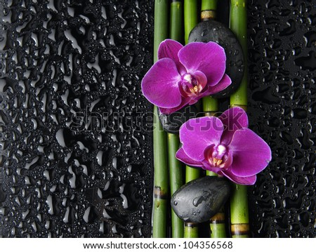 Two red orchid with stones and bamboo grove on wet background - stock photo