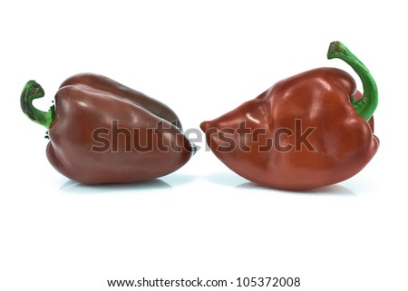 Two red sweet peppers isolated on white - stock photo