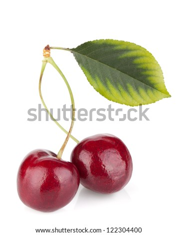 Two ripe cherries with green leaf. Isolated on white background
