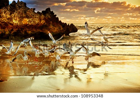 Two Rocks Sunset - Perth Australia - stock photo