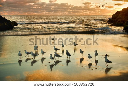 Two Rocks Sunset - Western Australia - stock photo