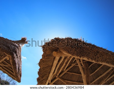 Two roof of reeds with bottom view