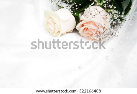 Two roses on a white silk background - stock photo