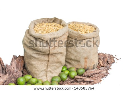 two sacks of bean isolated on white background - stock photo