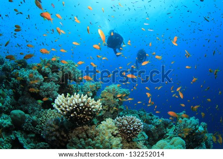 Two Scuba Divers explore coral reef in ocean