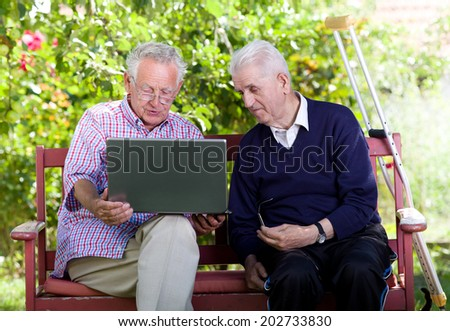 Two senior men sitting on bench in park and looking at laptop - stock photo