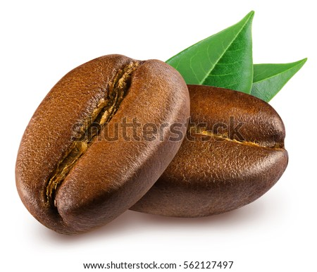 Two shiny fresh roasted coffee beans with leaves isolated on white background.