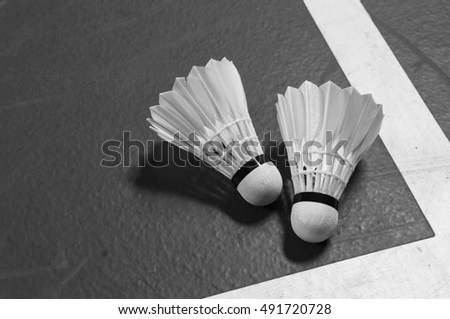Two shuttlecocks on badminton court near the white line in black and white