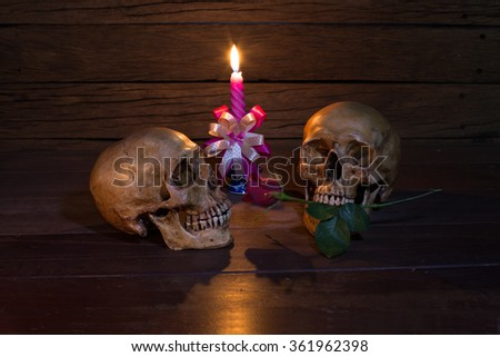 Two skull unceasing love, on old wooden table / Still life