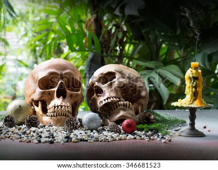 Two Skulls Candle Garden On New Stock Photo (Edit Now) 346681523 ...