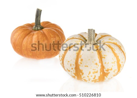 Two small gourd squash isolated on a white background.