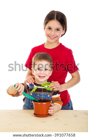 Two smiling kids caring for potted oak seedling, isolated on white - stock photo