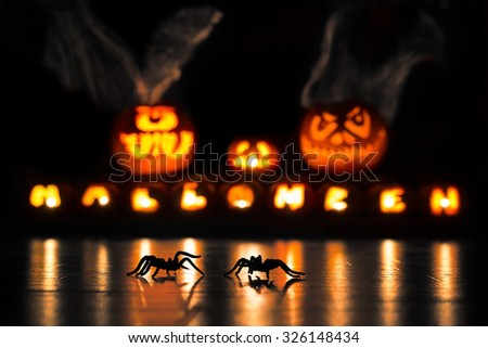 Two spiders crawling on the floor in front of illuminated Halloween pumpkins - stock photo