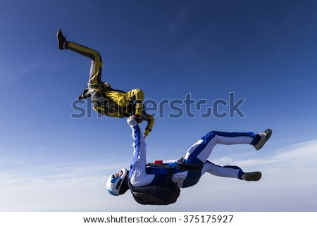 Two sportsmen skydiver in free style.