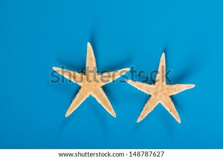 two starfishes on blue background