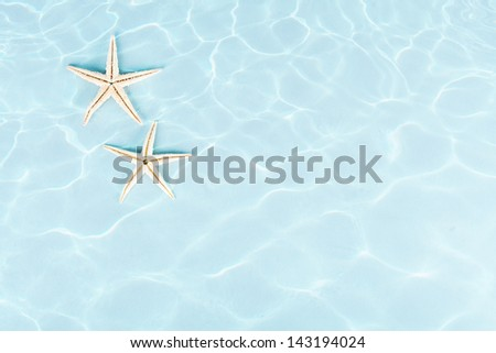 two starfishes under water on blue background - stock photo
