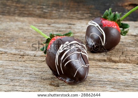 Two strawberries dipped in chocolate with white chocolate swirls. - stock photo