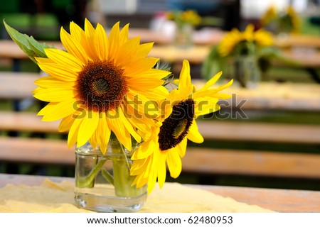 two sunflowers in vase - stock photo