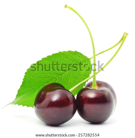 Two Sweet Cherry with stem and leaf on white background - stock photo