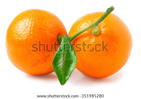 two tangerine with leaf on a white background. - stock photo