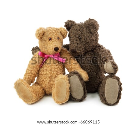 Two teddy bears  isolated on white background - stock photo