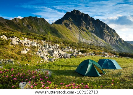 two tents at mountain scenery meadow and flowers - stock photo
