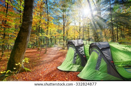 Two tents in the autumn forest on a hot sunny day