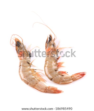 Two tiger shrimps. Isolated on a white background.