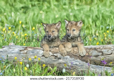 Two timber wolf cubs - stock photo