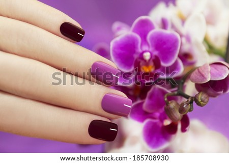 Two-tone fashion nails on female hand with orchids. - stock photo