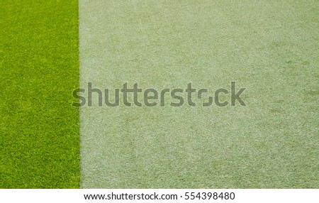 two tone of texture green grass background