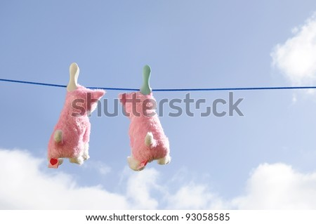 Two toy soft cats on a clothesline hanging out to dry. - stock photo
