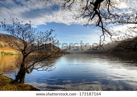 Two trees by Ennerdale Water - stock photo