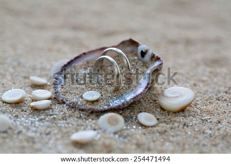 Two wedding rings in sea shell with shiva eye stones on the coral beach in Thailand. Focus on the rings.  - stock photo