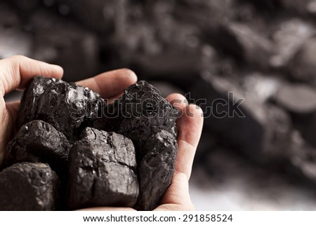 Two white hands holding lumps of black coal in focus - stock photo