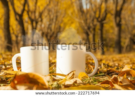 Two white porcelain cup of coffee or herbal tea , autumn fall concept Steam above Couple of mug standing near on dry yellow leaves and green grass on cold land Empty Trees park in perspective  - stock photo