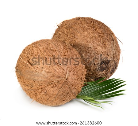 Two whole coconuts with green leaf isolated on white background - stock photo