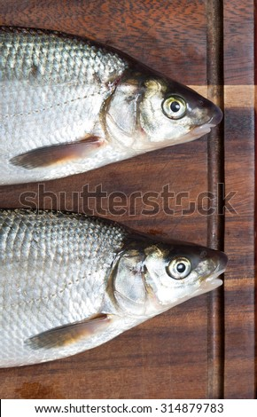 Two wild fishes on a wooden cutting board. Vimba vimba also called vimba bream or Abramis vimba. Caught in river Kuldiga (Riga, Latvia, Europe)