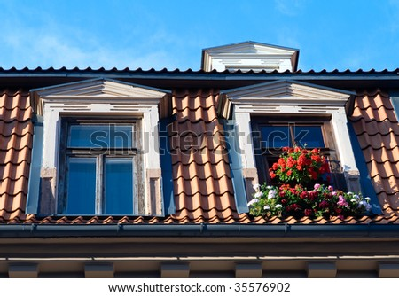 Two windows with flowers