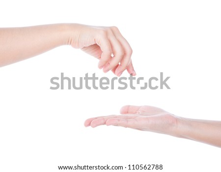 Two woman  hands isolated on a white background - stock photo